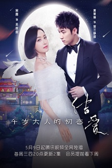His Excellency's First Love - 千岁大人的初恋 drama3s