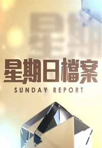 HKFree Sunday Report - 星期日檔案