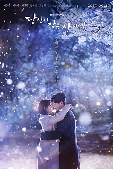 FastDrama While You Were Sleeping - 당신이 잠든 사이에